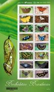 BRAZIL 2016  -  BRAZILIAN BUTTERFLIES  -  SET Of 2 MINI SHEETS  (16v + 6v) - Papillons