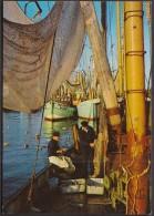 Germany Fisher-mans / Fishing / Ships - Pêche