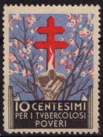 TBC - Tuberculosis - Charity Stamp VIGNETTE LABEL CINDERELLA - ITALY