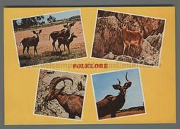 U6048 ETHIOPIA VUES FOLKLORE WILD ANIMALS (mik) - Ethiopie