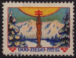 Pine Tree Mountain / 1922 1923 SWEDEN / Tuberculosis Charity Stamp / Label / Cinderella / Vignette - GOD HELG