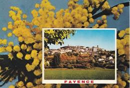 83----SOUVENIR DE FAYENCE---multi-vues---voir 2 Scans - Fayence