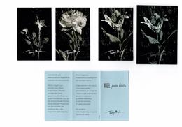 3 Cartes Parfumées Carte THIERRY MUGLER ANGEL JARDIN D'ETOILES PATCH LYS PIVOINE VIOLETTE - Cartes Parfumées
