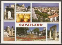 CPM.  Ayant Circulé. 19/07/2009.  Vues Diverses De CAVAILLON.  Melons  /  Fontaine... - Cavaillon