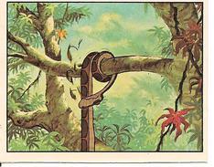 PANINI - LE LIVRE DE LA JUNGLE - COLLECTION 1983 - IMAGE N°263 - Panini