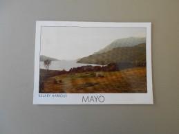 IRLANDE MAYO KILLARY HARBOUR - Mayo