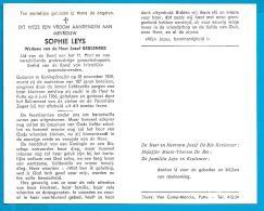 Bidprentje Van Sophie Leys - Koningshooikt - Putte - 1858 - 1966 (107 Jaar) - Images Religieuses
