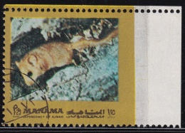 Manama Animal Missed Perforation ERROR (fa190)