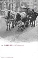 LUZERN → Ochsengespann In Der Stadt, Mit Grossen Holzfässer Beladen, Ca.1900 - LU Luzern