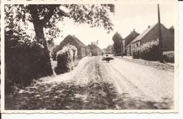 GEEL - BEL: De Oude Dorpstraat - Geel