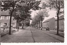 HERENTALS: Lichtaartsesteenweg En Kapellenblok - Herentals