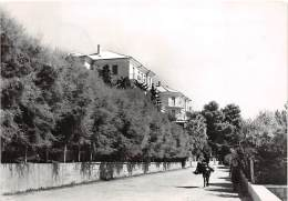 Kastel Stari, Hotel Palace - Croatie