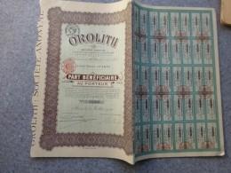 OROLITH, Lot De 6 TB Actions De 100 F ; Ref NO - Shareholdings