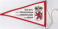 REKEM-KINDERKOLONIE-PREVENTORIUM-LIMBURGSE LEEUW-LIONS CLUB-FIETS-VLAGJE-12 OP 21 CM-ORIGINEEL-ALS NIEUW-ZIE 2 SCANS ! - Lanaken
