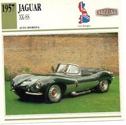 """Auto Da Collezione """"Jaguar  1957   XK-SS"""" (Gran Bretagna) - Motori"""
