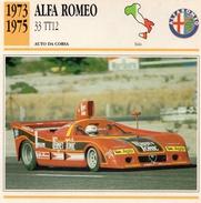 """Auto Da Collezione """"Alfa Romeo 1973  33 TT12"""" (Italia) - Motori"""