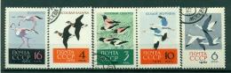 Russie - USSR 1962 - Michel N. 2688/92 - Oiseaux Divers