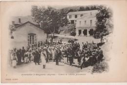 Insurrection à Marguerite ( Algérie ) Convoi De Rebelles Prisonniers - Alger