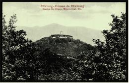 Chateau De Pflixbourg / Pflixburg  -  St. Gilgen  Münsterthal / Alsace  -  Carte Postales Ca. 1910  (5963) - Frankreich