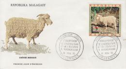 Enveloppe  1er  Jour  MADAGASCAR  Chévre  Mohair   1972 - Madagascar (1960-...)
