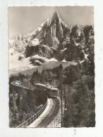 Cp , Chemin De Fer , TRAIN De MONTENVERS Et L'aiguille Du DRU , Vierge , Ed: Gil , N° 3817 - Trains
