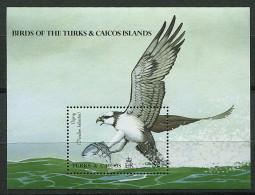 Turks Et Caiques ** Bloc N° 88 - Oiseaux Indigènes -