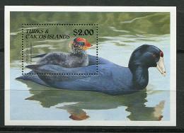 Turks Et Caiques ** Bloc N° 94 - Oiseaux Aquatiques -