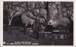 UN DES CINQ RUCHERS.-DE L'ABBE MARENNE A ROCHEHAUT S/SEMOIS-ZEER MOOIE POSTKAART.-KOOPJE