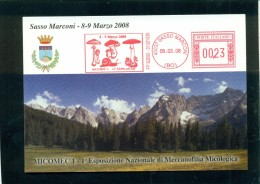 SASSO MARCONI - ESPOSIZIONI - MERCATI - FUNGHI - MARCOFILIA - TARGHETTE ROSSE - Mushrooms