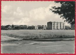 AK HAMBURG ´Neugraben´ ~ Um 1960 - Harburg