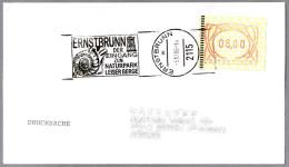 AMMONITE FOSIL. Ernstbrunn 1996 - Fossilien