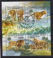 Burundi 2012 Fauna, Lions