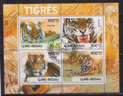 Guinea-Bissau 2012 Fauna, Tigers