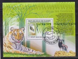 Guinea 2009 Fauna, Tigers, WWF