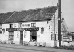Photo ASSE Café Venise Brusselsesteenweg 1958 - Orte