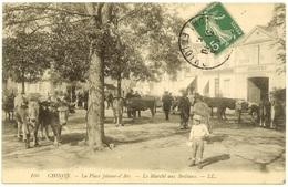 37 081   CHINON  Marché Aux Bestiaux Place Jeanne D'Arc - Chinon