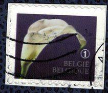 Belgique 2013 Oblitéré Used Représentation Symbolique Du Deuil Une Fleur Sur Fragment - Belgique