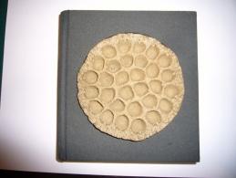 Les Psaumes De La Création (avec Pierre Sculptée En Couverture) - Religione