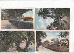 Etats Unis -Floride -  Palm Beach  -  4 Cartes   : Achat Immédiat - Palm Beach