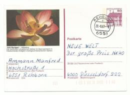 Fleur De Lotus - Jardin Botanique Wilhelma De Stuttgart