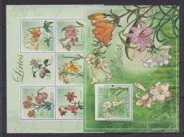 S12 Guinea-Bissau - MNH - Plants - Flowers - 2009