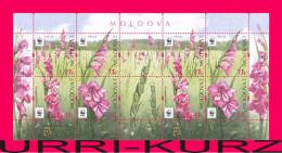 MOLDOVA 2016 Nature Flora Plants WWF Wild Meadow Field Flowers Gladiolus Imbricated Souvenir Sheet Mi.Klb.958-961 MNH