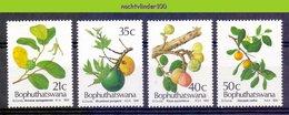 Ncf064 FLORA WILDE EETBARE VRUCHTEN WILD FRUITS YOU CAN EAT BOPHUTHATSWANA 1991 PF/MNH - Fruits