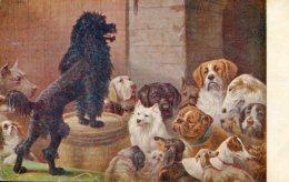 POODLE DOG ADDRESSES DOG GATHERING OLD Postcard SPERLING - Honden