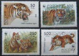 RUSSIA 1993  WWF Tiger  4v.  Perf.