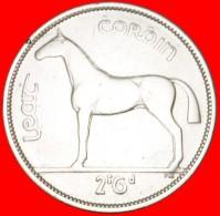 § HORSE: IRELAND ★ 1/2 CROWN 1940 SILVER! LOW START ★ NO RESERVE! - Irlanda