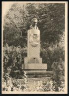 7489 - Alte Postkarte - Denkmal Rosegger Brunnen In Mürzzuschlag - Prof. Gösser Graz - VDA - Steffen Lichtbild Graz - Monuments