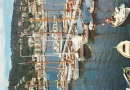 Saint Mandrier Voilers Au Mouillage - Saint-Mandrier-sur-Mer