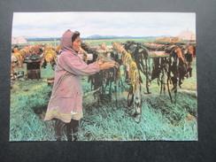 AK / Werbepostkarte IX Alaska Maggi Postkarte. Sechage De Peaux De Baleines. USA / Eskimos - Advertising