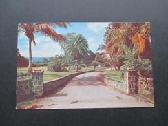 AK Montserat 1966 Entrance To Cocoa Nut Hill Hotel. Plymouth Montserat. - Montserrat